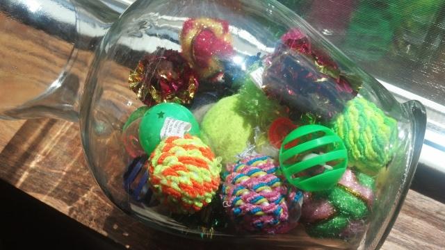 Cat Toys in a Jar