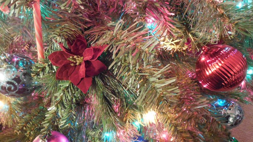 Detail of our Tree