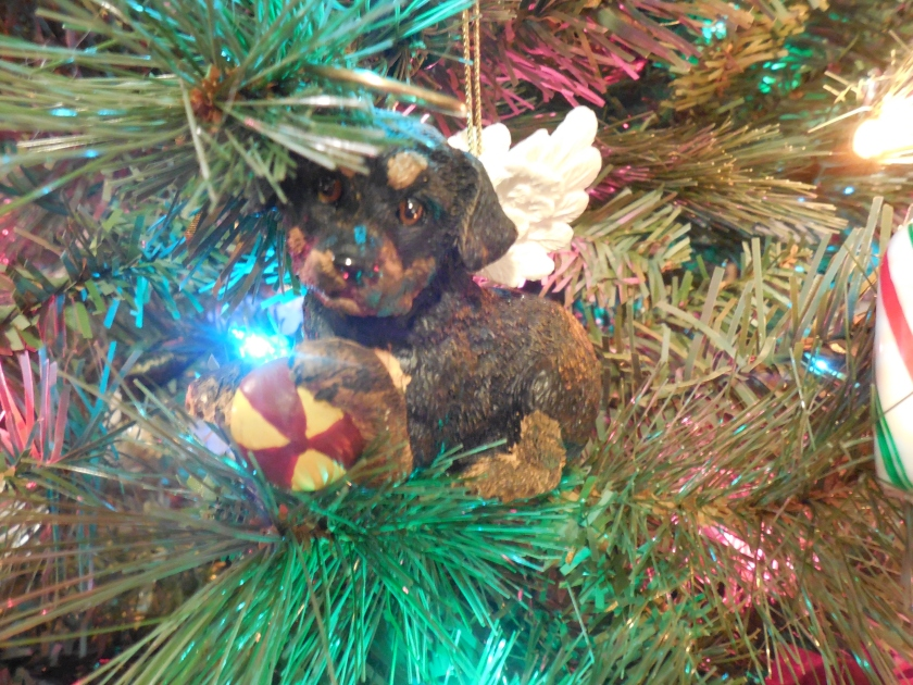 Angel dog ornament